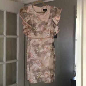 Pink lulus dress with lace appliqué